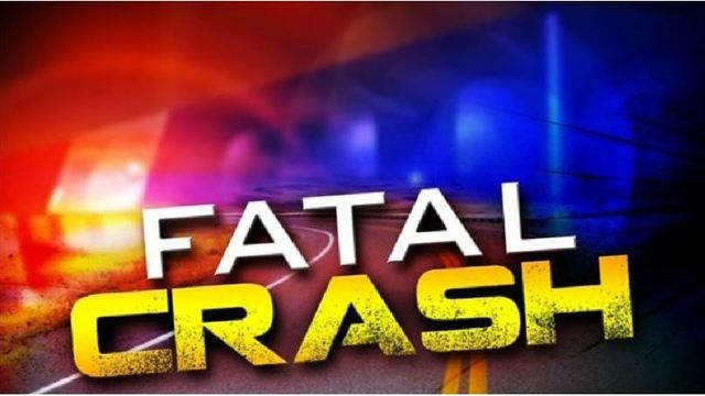 Woman dies after car overturns outside Phenix City