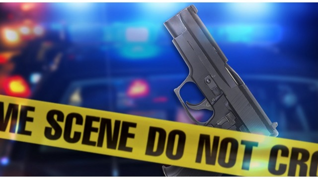 Alabama man dies in accidental shooting after gun discharges from diaper bag