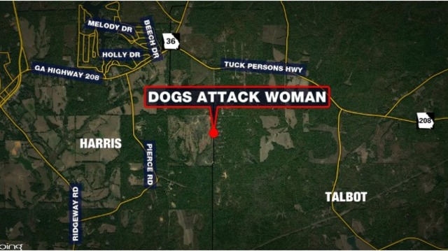 Talbot County woman mauled in dog attack